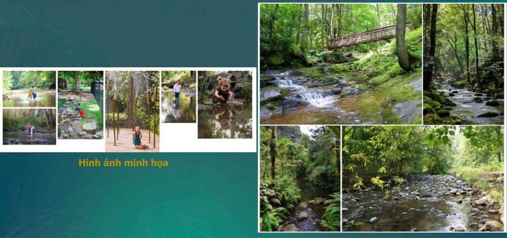 Công viên Forest Creek