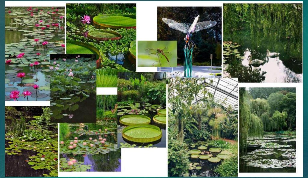 Công viên Botanica